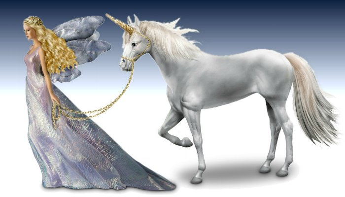 Fantasy Fairy Doll And Unicorn