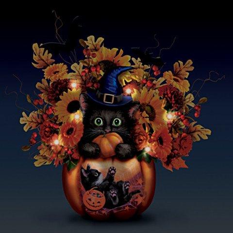 Scaredy Cat Table Illuminated Centerpiece - Dark