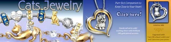 Jewelry for Cat Lovers