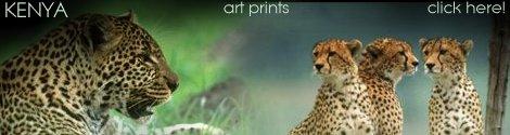 Kenya art prints