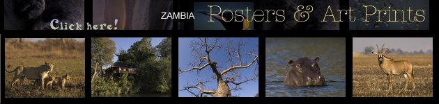 Zambia - Africa